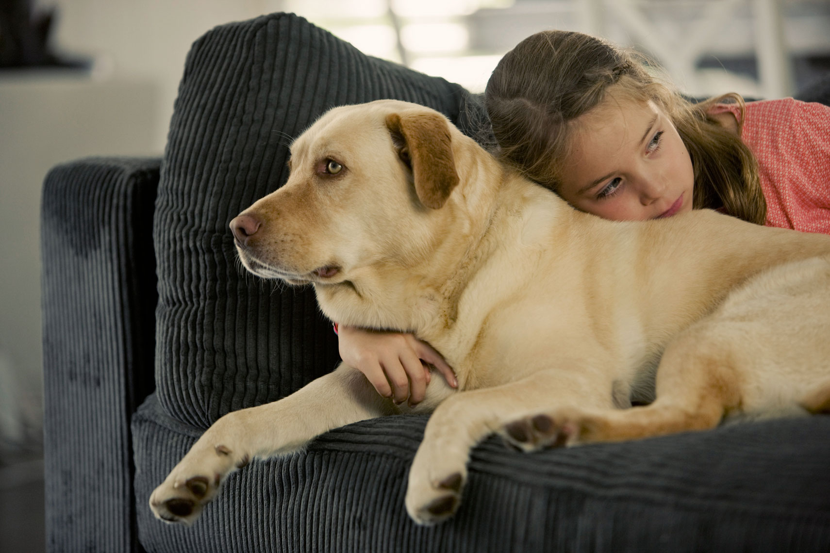 Plush furniture - Human - Girl And Dog